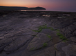 Kimmeridge Rock pools, sea weed, sunrise
